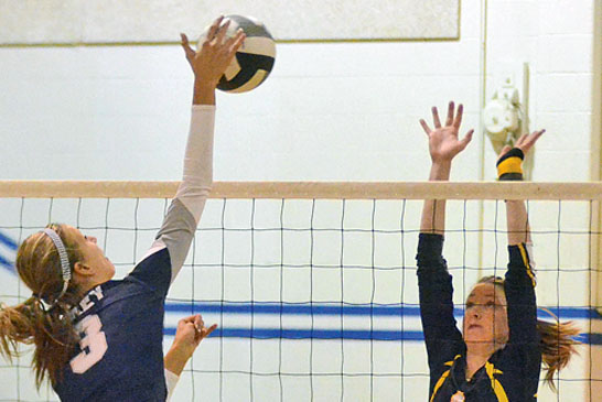 Polar Bears swept by Carey in sectional final