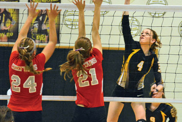 Polar Bears rally past H-L for sectional victory