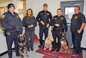 Hardin County dog tags for 2015 to go on sale Monday