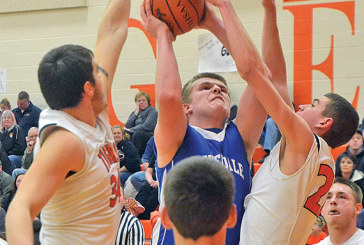 Falcons fall in finale to Tigers