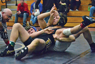 Falcons perform well in placing matches