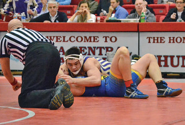 Windle aims for high place at state wrestling tournament