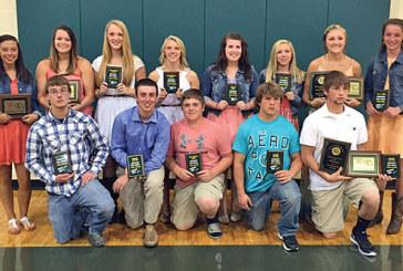 Gopher award winners