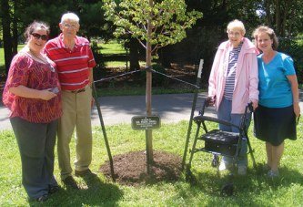 Ada honors long-time member with tree