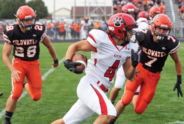 Kenton falls on road to Coldwater