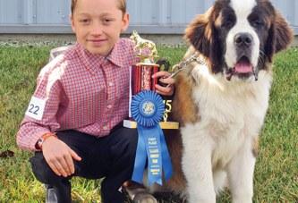 Dog days at the county fair