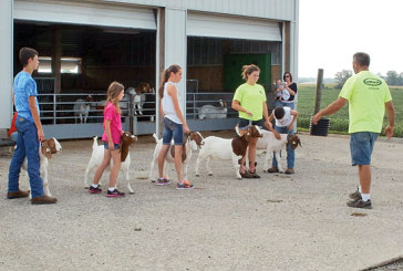 Hardin County 4-H Club News: September 5, 2015