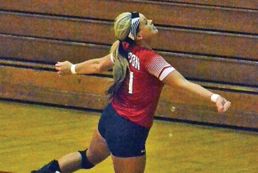 Bulldogs sweep Kenton in county volleyball contest