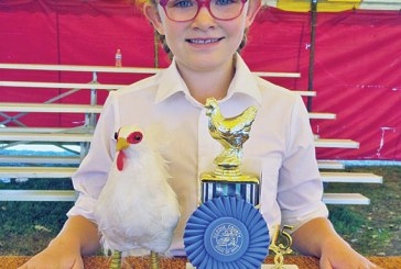 Poultry showmanship