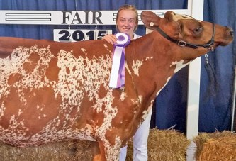 Dairy show awards