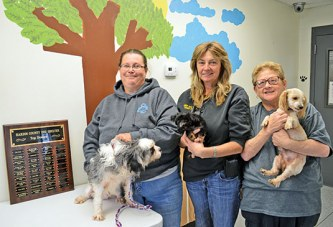 Open house at dog shelter to showcase results of donations