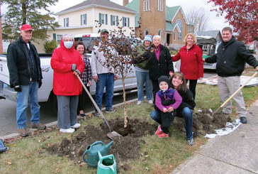Mount Victory celebrates Arbor Day with tree planting