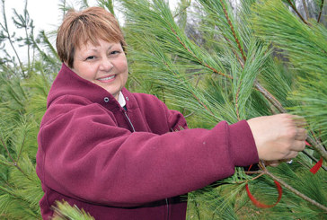 Kenton couple shares Christmas trees to bring holiday spirit to families