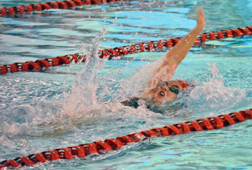 KHS grad Cole finds 'family' feel with West Virginia Wesleyan swim team