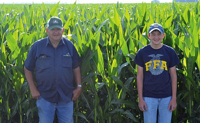 Recent rains a blessing for crops, farmers say