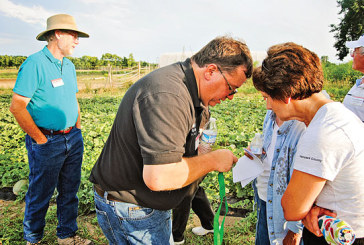 Gardeners and produce farmers take 'Crop Walk' through Amish business