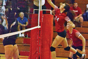 Errors cost Kenton in home volleyball loss