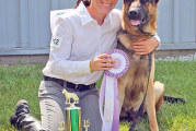 Awards for dogs and more