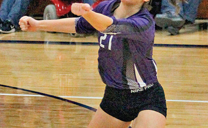 Bulldogs fall short in four in district semi