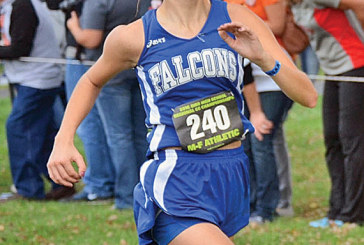 R'dale girls gain experience at DIII cross country meet