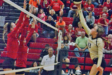 Raiders win 'nervewracking' sectional final in five games