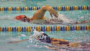Sectional swim
