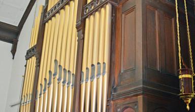 Organ showcased