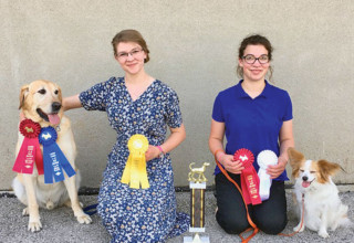 Dog show awards