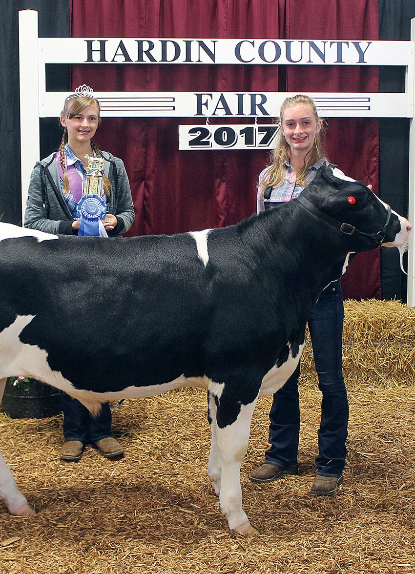 Age 12 dairy beef feeder winner