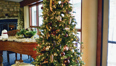 Christmas tree at the Inn at ONU