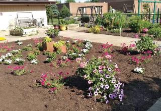 Annual Garden planted at Friendship Gardens